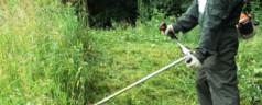 Стрижка газона — несколько главных секретов